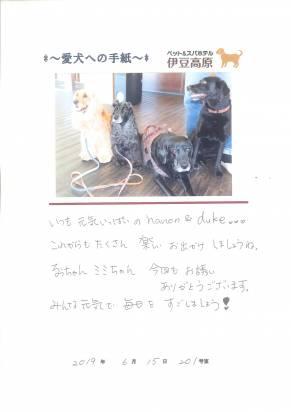 hanon&duke&るぅ&みみ