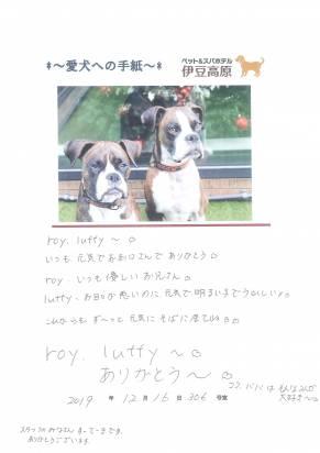 roy ・luffy