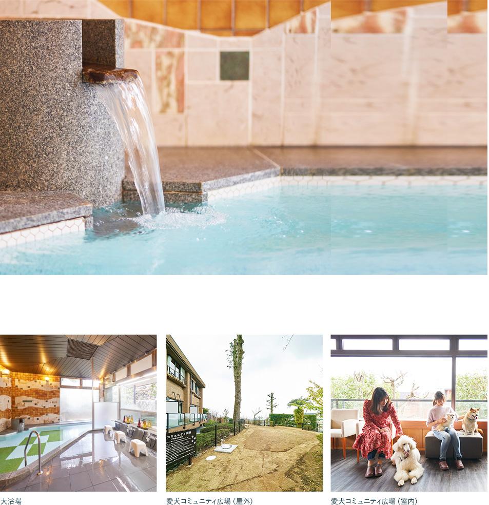 旅の疲れを癒す温泉と館内施設