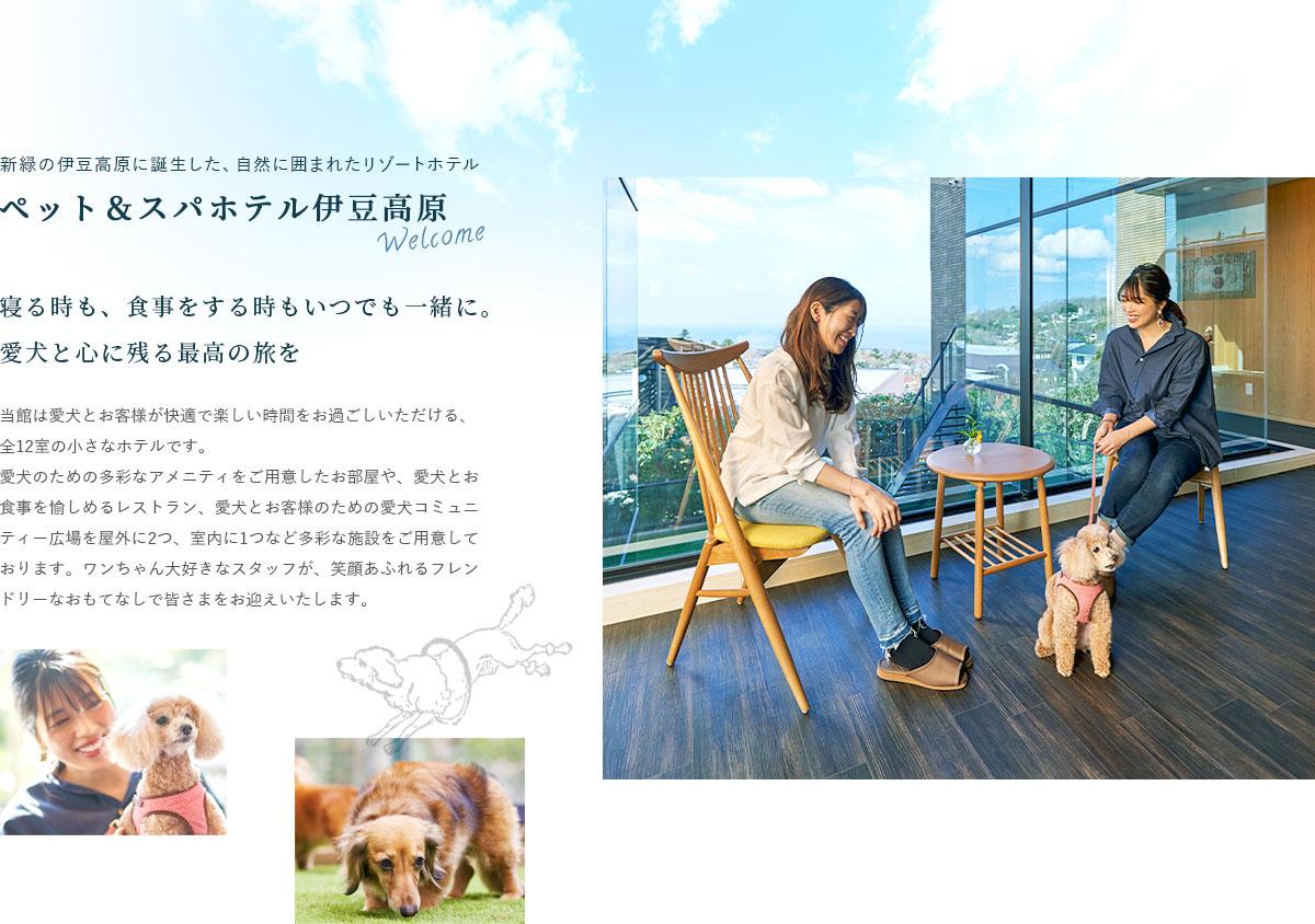 新緑の伊豆高原に誕生した、自然に囲まれたリゾートホテル ペット&スパホテル伊豆高原