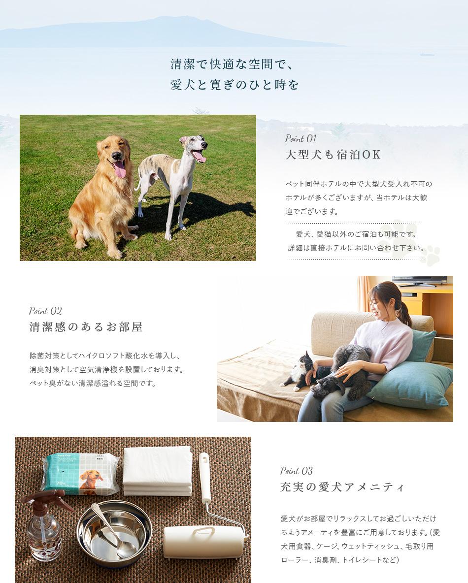 清潔で快適な空間で、愛犬と寛ぎのひと時を